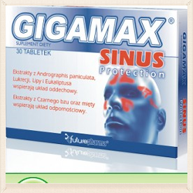 Gigamax SINUS PROTECTION 30 tabl